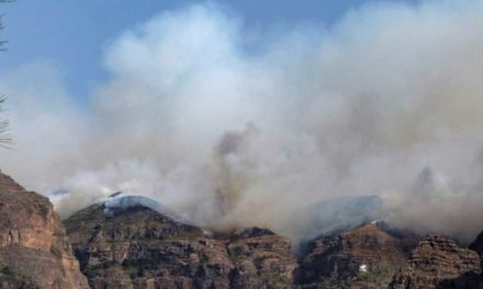 Ännu en brand på Gran Canaria i Tejeda