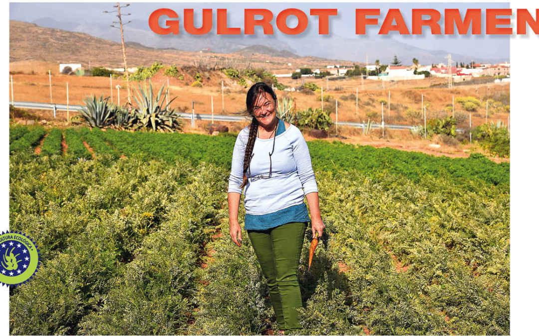 GULROT FARMEN