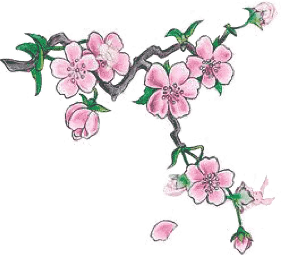Mandelkvist i blom