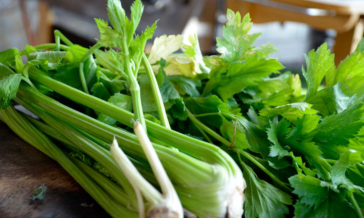 Sunn mat er grønn