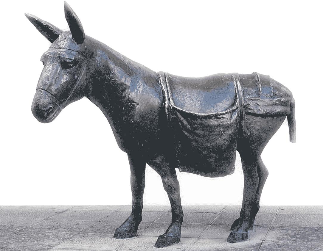 Staty åsna