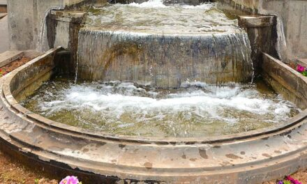 Firgas Världens bästa dricksvatten!?