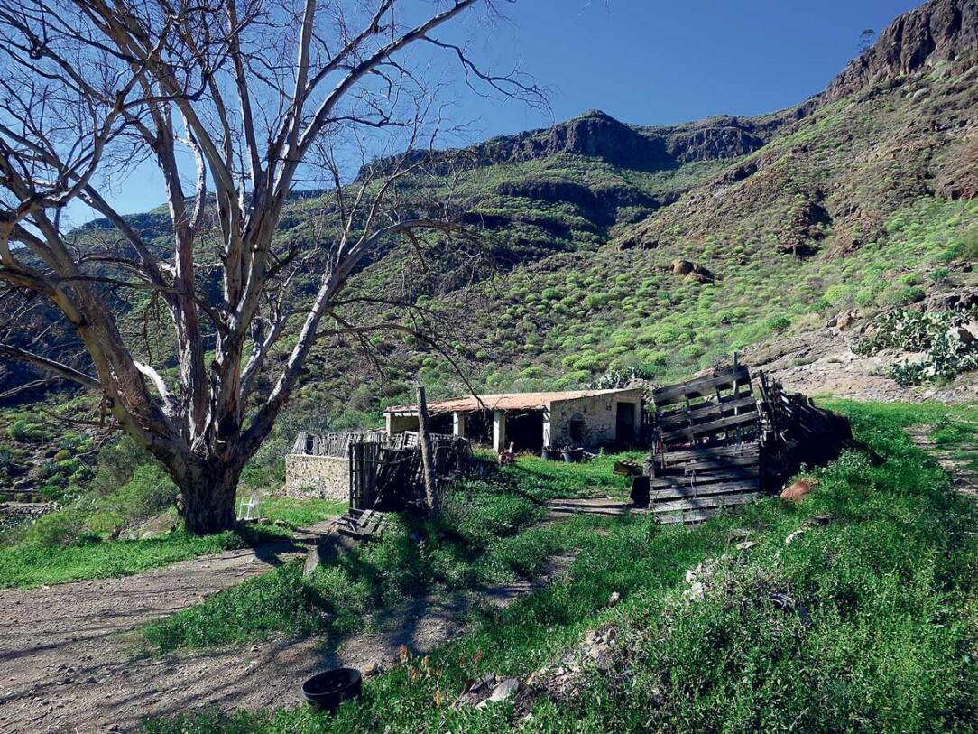 Hus vid Tauro Alto